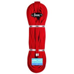 Rope Wall Cruiser 10.4 (20 m)