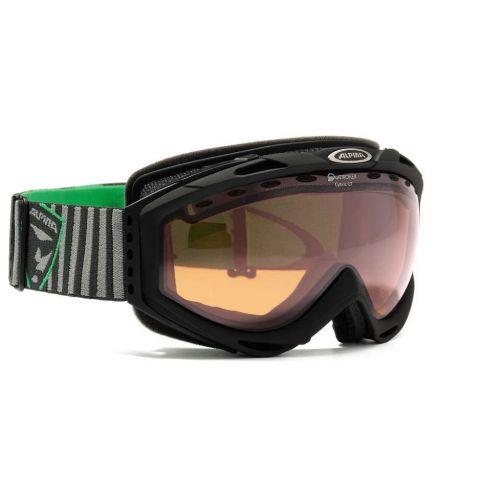 Goggles Cybric GT