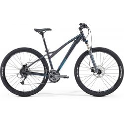 Mountain bike Juliet 7. 300
