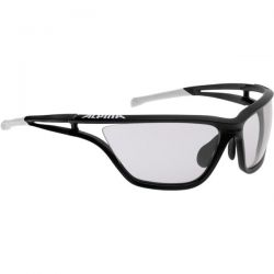 Sunglasses Alpina Eye-5 VL+