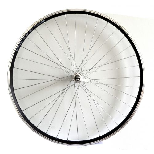Front wheel Dragon Line 28""