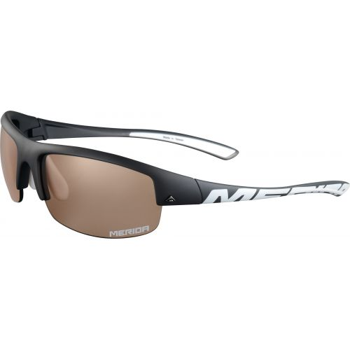Sunglasses Eye Shield T445B1
