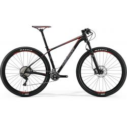 Mountain bike BIG NINE 700