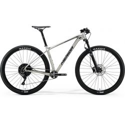 Mountain bike Big Nine Limited