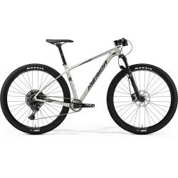 Mountain bike Big Nine NX-Edition