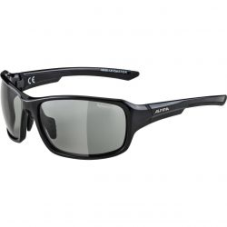 Sunglasses Alpina Lyron VL