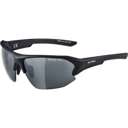 Sunglasses Alpina Lyron HR CM