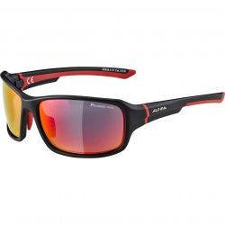 Sunglasses Alpina Lyron PM